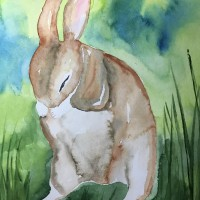 Trauriger Hase_1